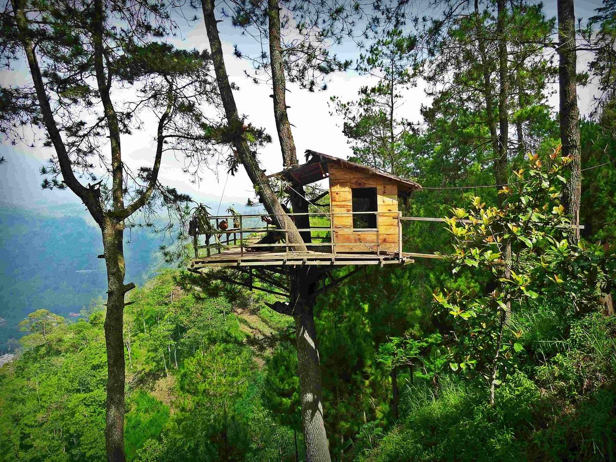11 Tempat Wisata Romantis di Malang dan Sekitarnya